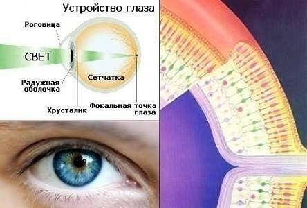 Методика улучшения зрения