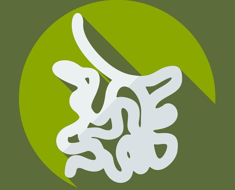 Опытный китайский врач: «Неправильно лечитесь, товарищи! Органы всегда болеют парами»