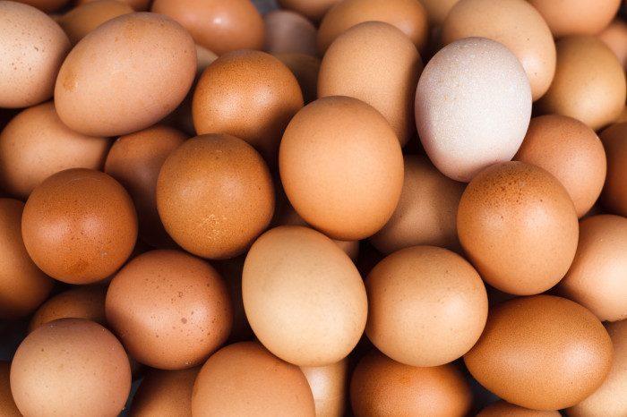 Миф или правда: можно ли есть яйца с красным пятном на желтке?