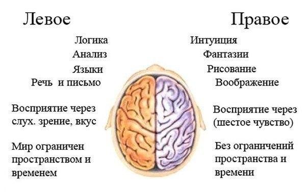 Тренировать нужно не только тело. Упражнение ума для развития мозга.