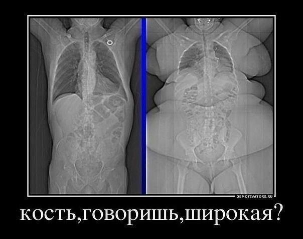 Жиросжигание — это не тренировки, а питание