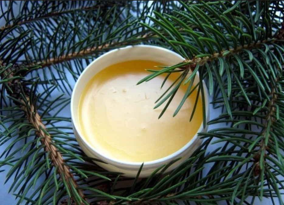 Масло и свежая хвоя от любой боли