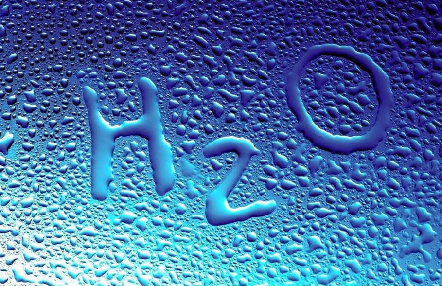 Белковые токсины — причина всех болезней