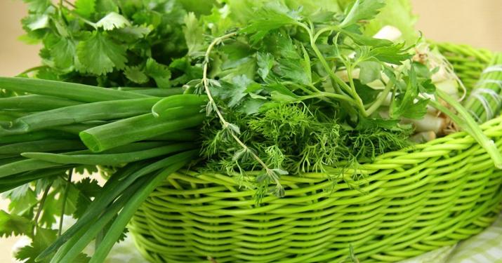 Какая из зелени самая полезная. польза и вред