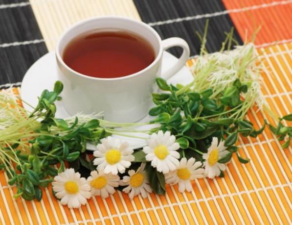 Травы для женского здоровья и гармонии