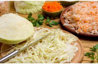 7 достойных рецептов квашенной капусты и советы, как квасить капусту, чтобы она хрустела, была сочной и не портилась
