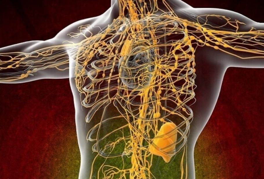 Лучшие рекомендации по очищению лимфатической системы