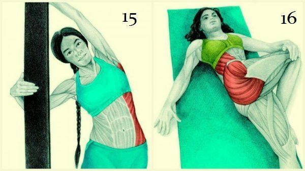 20 упражнений для гибкости тела