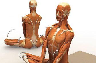 6 упражнений, которые снимут усталость и напряжение от шеи до пяток!