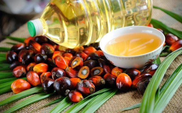 Мифы и правда про пальмовое масло