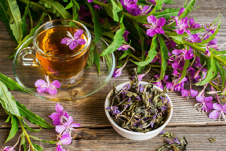 Очищение лимфы: золотые рецепты фитотерапии