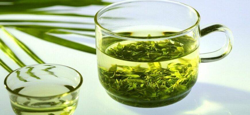 Так ли полезен зеленый чай